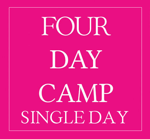 4 Day Camp Individual Days